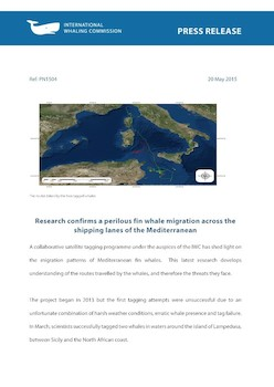 IWC Press Release: Research confirms a perilous fin whale migration across the shipping lanes of the Mediterranean