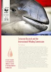 CC-ForInfo1  WWF - Cetacean Bycatch and the IWC