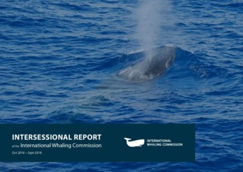 Intersessional Report of the IWC 2016-18
