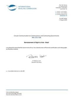 IWC.CCG.1326 | Reinstatement of Right to Vote - Brazil