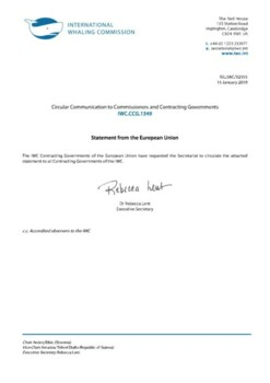 IWC.CCG.1349 | Statement from the European Union