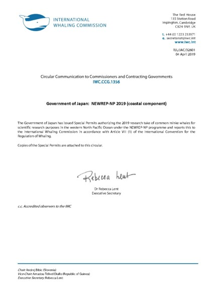 Full screen preview